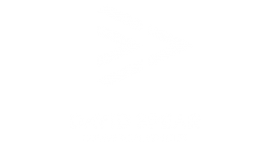 David-Spear-Logo-White